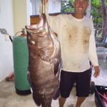 rincon fishing charters - grouper fishing in rincon, puerto rico.