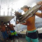 rincon fishing charters - marlin and sailfish fishing in rincon, puerto rico.