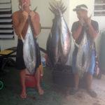 rincon fishing charters - big tuna fishing in rincon, puerto rico.